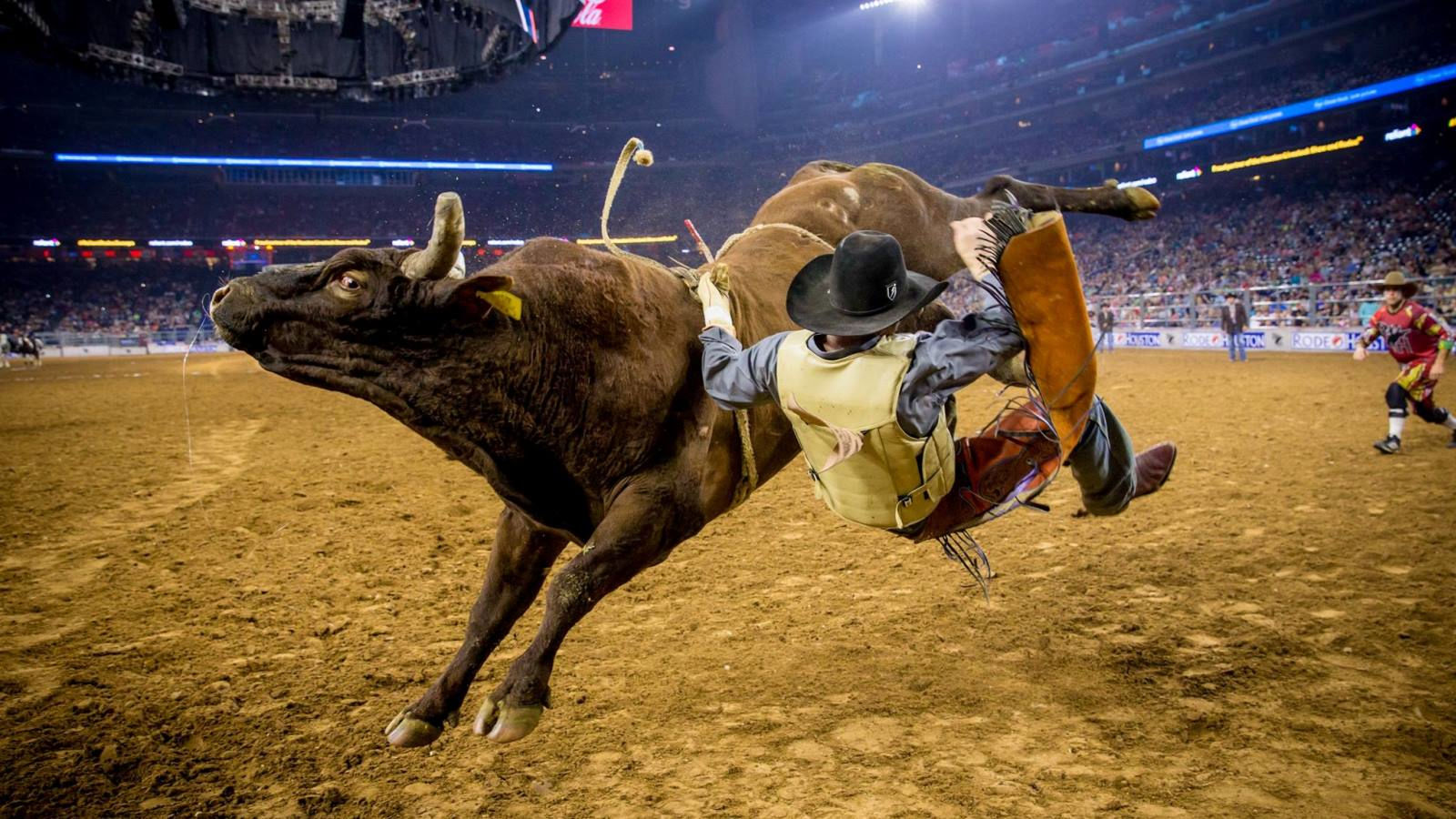 Image Courtesy of The Houston Livestock Show and Rodeo
